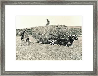 Making Hay While The Sun Shines 1903 Framed Print by Padre Art