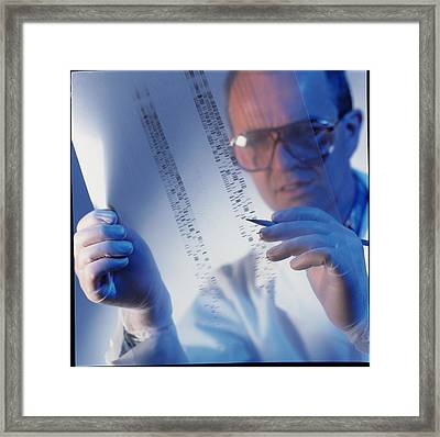 Male Technician Examines Dna Sequences Framed Print by Tek Image