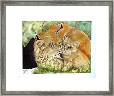 Mama And Baby Lynx Framed Print by Sandra Valentini