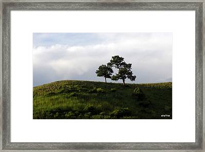 Mama And Baby Tree Framed Print