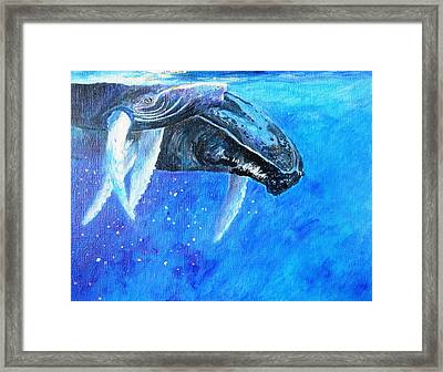 Mama And Baby Whale Framed Print by Tamara Tavernier