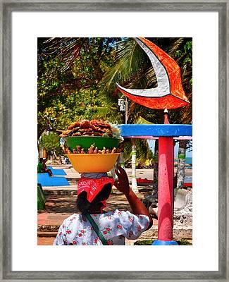 Mama Coco Framed Print by Skip Hunt