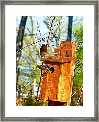 Framed Print featuring the photograph Mama Leaving by William Fields