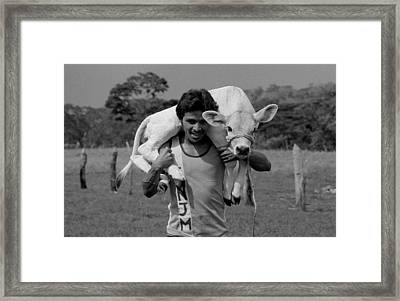 Man With Calf Framed Print by Michael Mogensen
