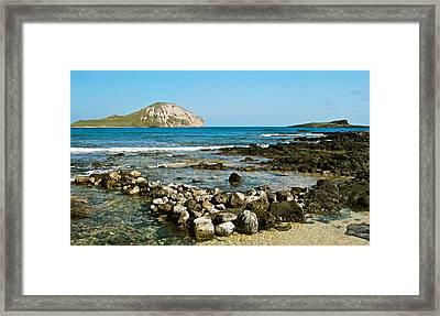 Manana Island 0046 Framed Print by Michael Peychich