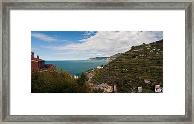 Manarola Terraces Framed Print by Mike Reid