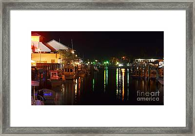 Manatee Pocket At Night Framed Print