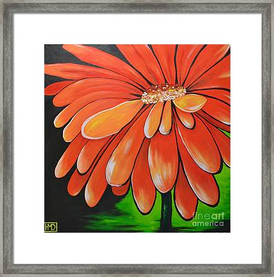 Mandarin Orange Framed Print by Holly Donohoe