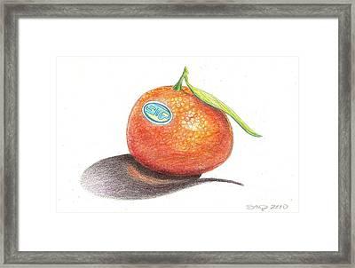 Mandarin Orange Framed Print by Sean Paradise