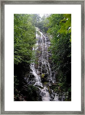 Mango Falls Framed Print by Randy Edwards