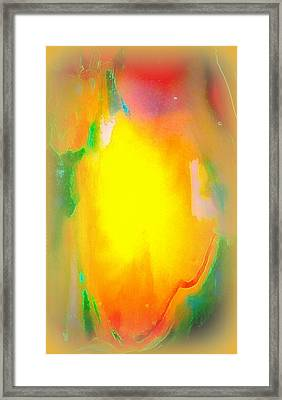 Mango In Mist Framed Print by Wendy Wiese