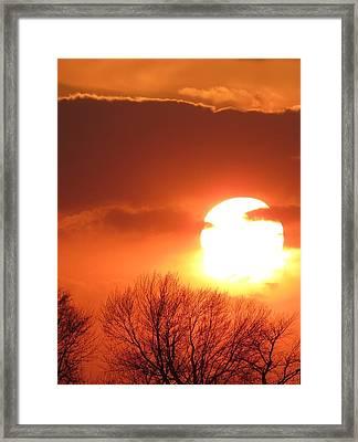 Mango Sunset Kansas Tree Silhouette Framed Print