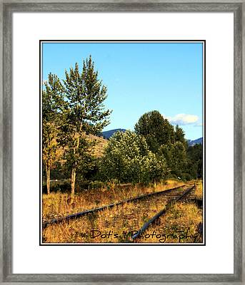 Manly Meadows Framed Print