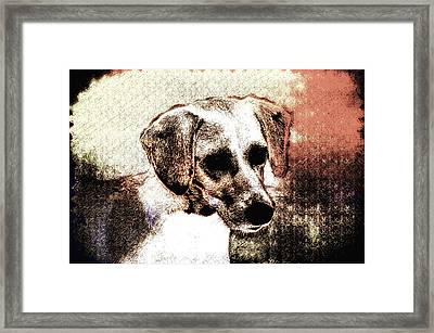 Mans Best Freind Framed Print by Bill Cannon