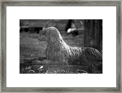 Mans Best Friend Framed Print by Penny Hunt