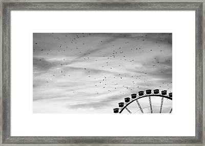 Many Birds Flying Over Giant Wheel In Berlin Framed Print