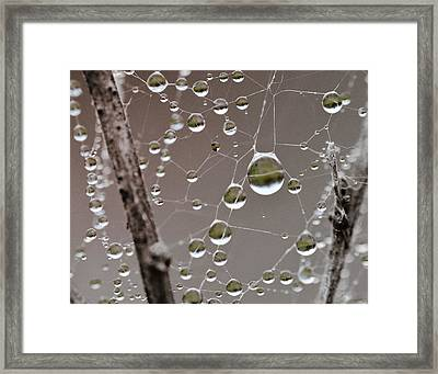 Many Worlds In One Small Space Framed Print