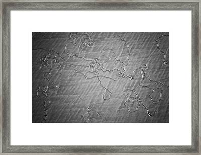 Map In The Sand Framed Print by Anthony Doudt