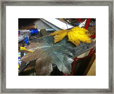 Maple Leaf  Framed Print by Jeremy Pontbriand