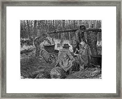 Maple Syrup, C1800 Framed Print by Granger