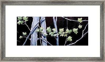 Maples In Moonlight Framed Print by Diane Daigle