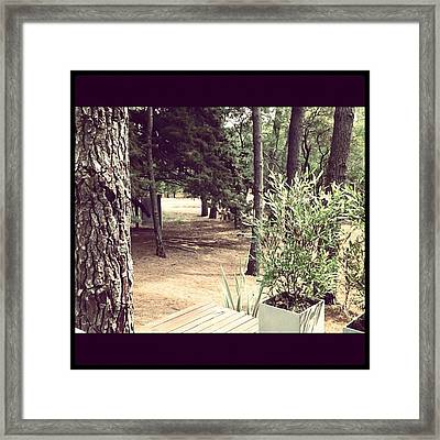 Mar De Las Pampas Framed Print by Pablo Grippo