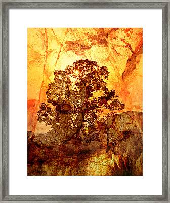 Marbled Tree Framed Print by Marty Koch