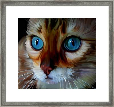 Marbles  Framed Print by Susan  Solak