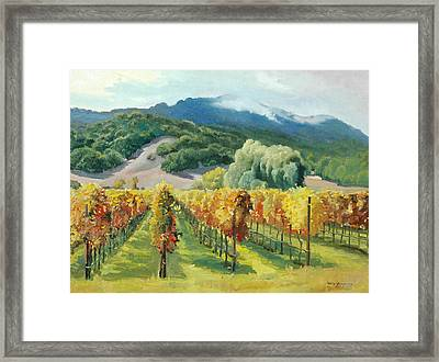 March Of November Framed Print by Paul Youngman