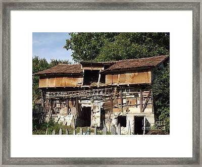 Mariana's Cowhouse Framed Print