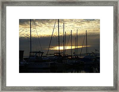 Framed Print featuring the photograph Marina by Jerry Cahill
