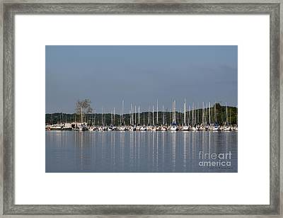 Framed Print featuring the photograph Marina by Todd Blanchard