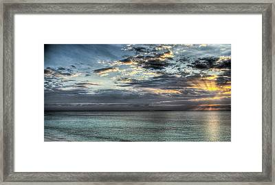Framed Print featuring the photograph Marine Paradise by Andrea Barbieri