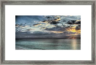 Marine Paradise Framed Print by Andrea Barbieri