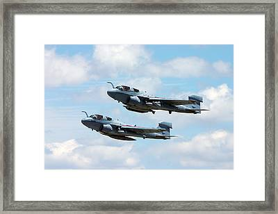 Marine Prowlers Framed Print by Pat Speirs