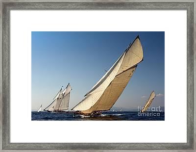Mariska  Framed Print by Nigel Pert