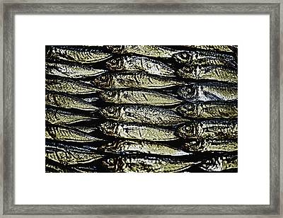 Market Fish Framed Print by Skip Nall