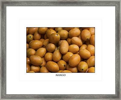 Market Mangoes Against White Background Framed Print by Zoe Ferrie