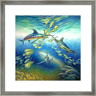 Marlin Frenzy Framed Print by Nancy Tilles