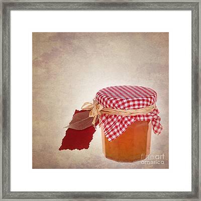Marmalade Gift Vintage Framed Print by Jane Rix