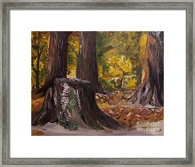Marr Park Trees Of Fall Framed Print by Art Hill Studios