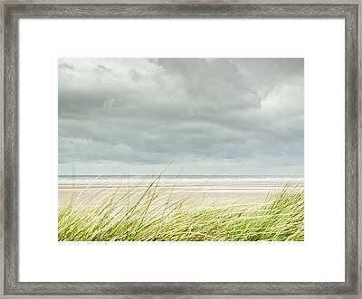 Marram Grass On Beach By Sea Framed Print by Dune Prints by Peter Holloway