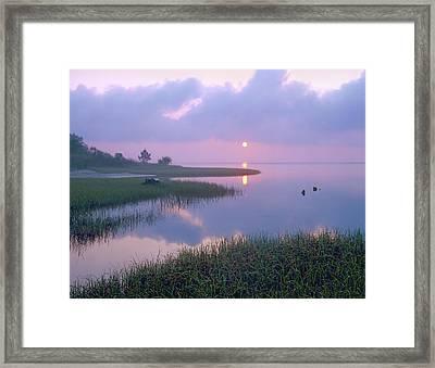 Marsh At Sunrise Over Eagle Bay St Framed Print by Tim Fitzharris