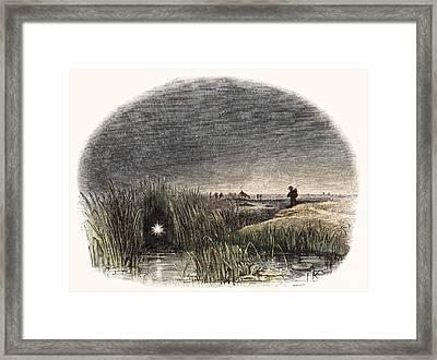 Marsh Light Framed Print by