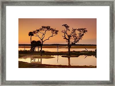 Marsh Morning Framed Print by Phill Doherty