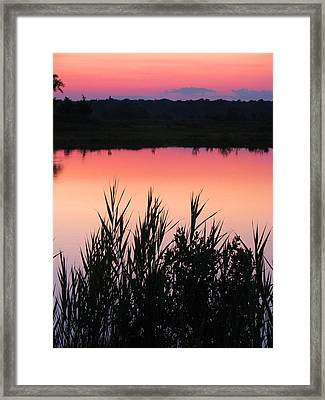 Framed Print featuring the photograph Marsh Sunset by Clara Sue Beym