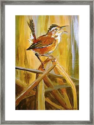 Marsh Wren Framed Print by Edith Hunsberger