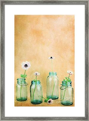 Mason Jars Framed Print by Stephanie Frey