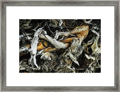 Mass Grave Framed Print by Donna Blackhall