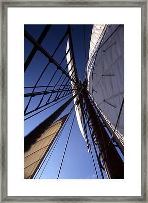 Masthead Framed Print by Skip Willits